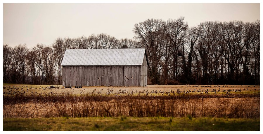 southern maryland photography20