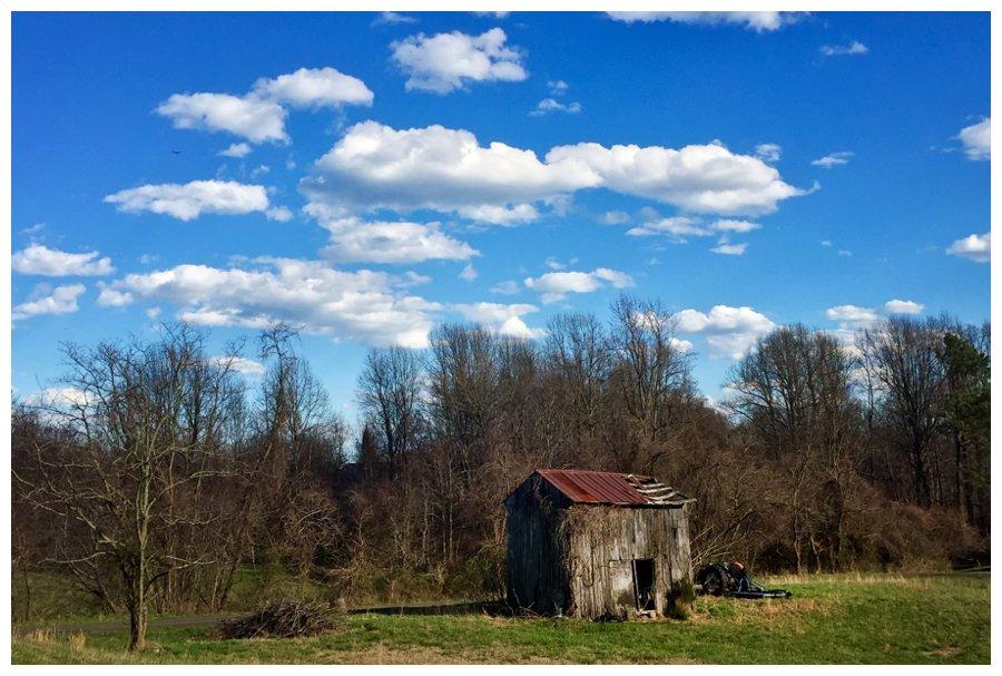 calvert county barns-19