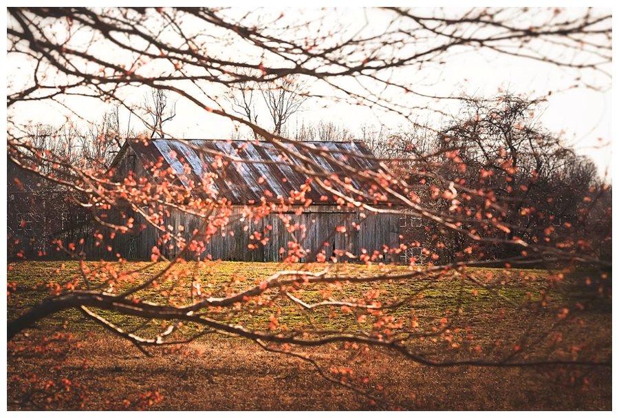 calvert county barns-23