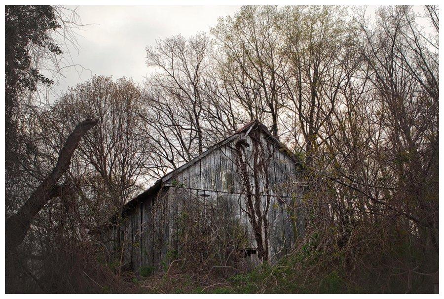 calvert county barns-27
