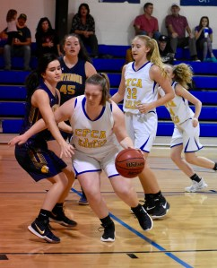 Eagles topped in SAC tournament, await state tournament pairings