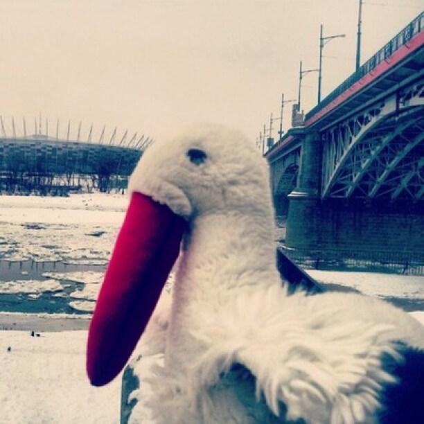 Wisła i Stadion Narodowy zimą mnie zachwyca!