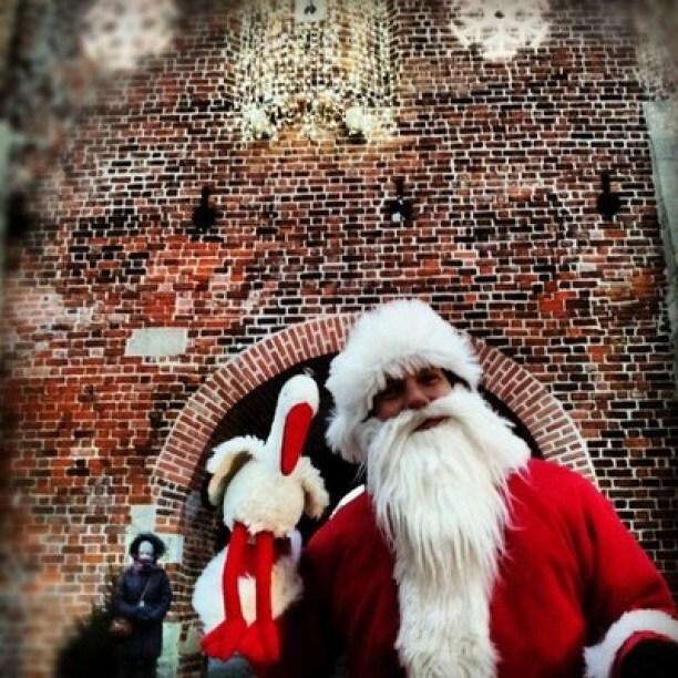 Bocian w Lublinie spotkał Świętego Mikołaja podczas Jarmarku Bożonarodzeniowego