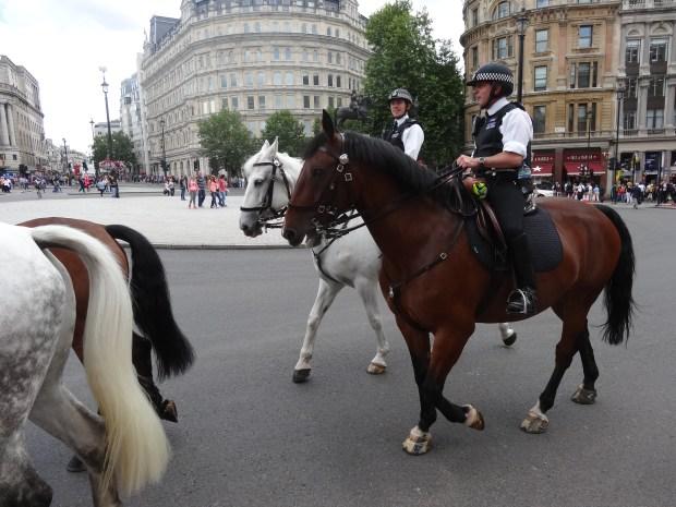 londyn-policja-konna-policjanci-na-koniach-w-londynie-anglia-trafalgar-square