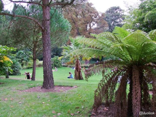 londyn-battersea-park-najpiekszniejsze-parki-w-londynie-tamiza-poludnie-atrakcje-dla-dzieci-anglia-00017