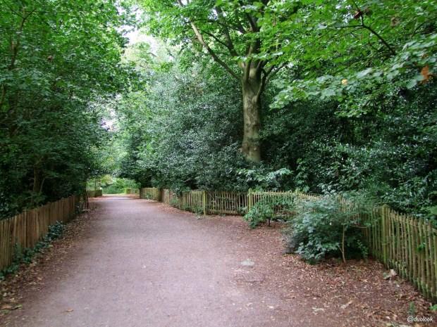 parki-w-londynie-holland-park-kensington-chelsea-piekne-atrakcje-stolicy-wlelkiej-brytanii-23