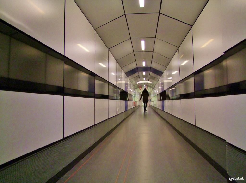 gladsone-link-biblioteka-ksiazki-uniwersytet-oksfordzki-studia-oksford-atrakcje-anglia-17