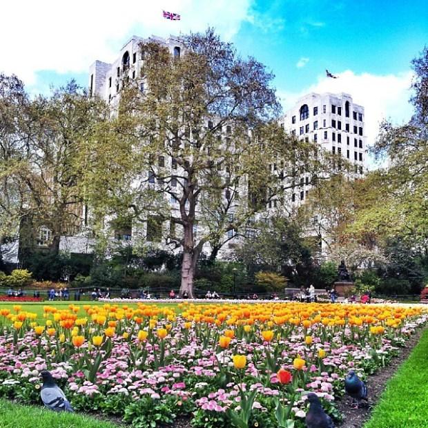 Instameet-Londyn-Gdansk-Instagram-weekend-w-londynie-victoria-embankment-gardens