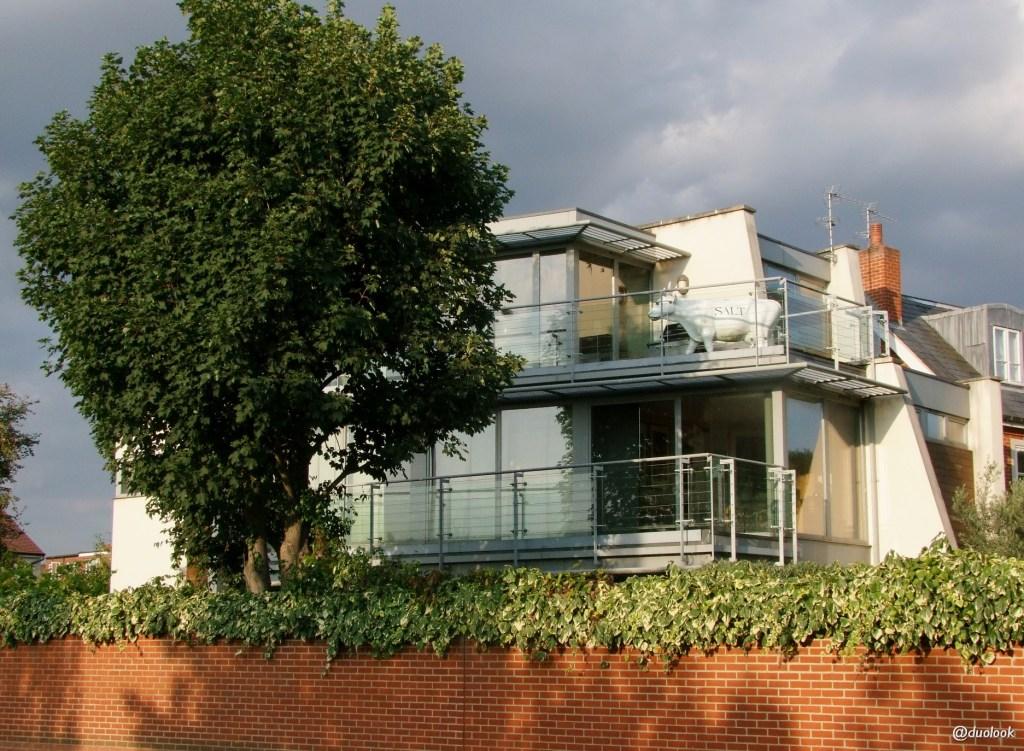 mieszkania w zachodnim Londynie