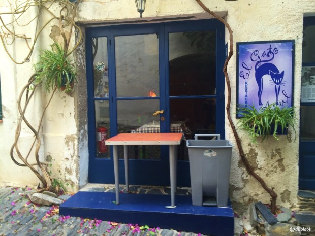 artysci-kot-salvador-dali-cadaques-katalonia-wycieczka-z-barcelony-hiszpania-24