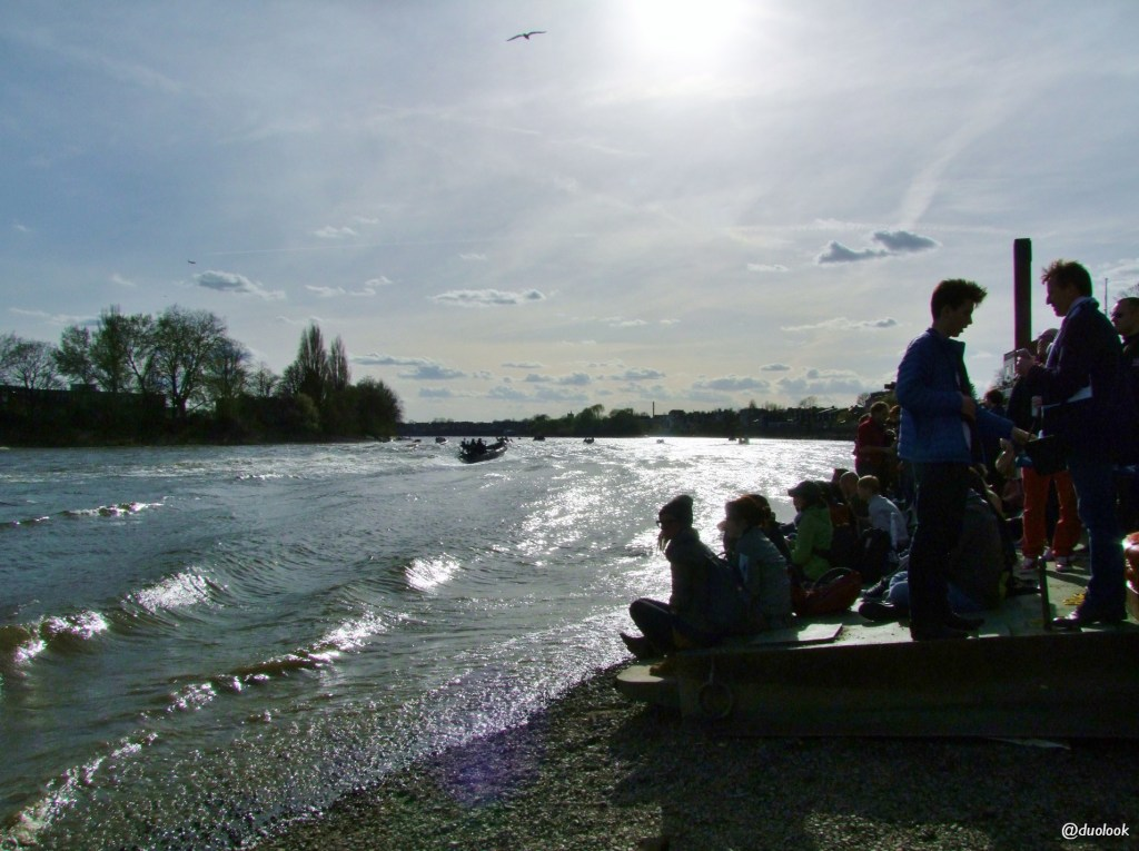 regaty-wioslarze-oxford-cambidge-tamiza-londyn-03