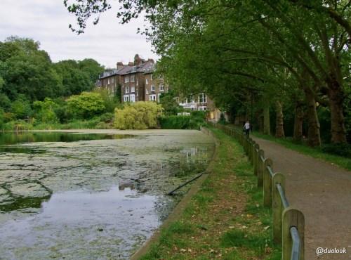 hampstead-heath-londyn-04