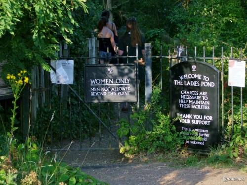 ladies-pond-hampstead-heath