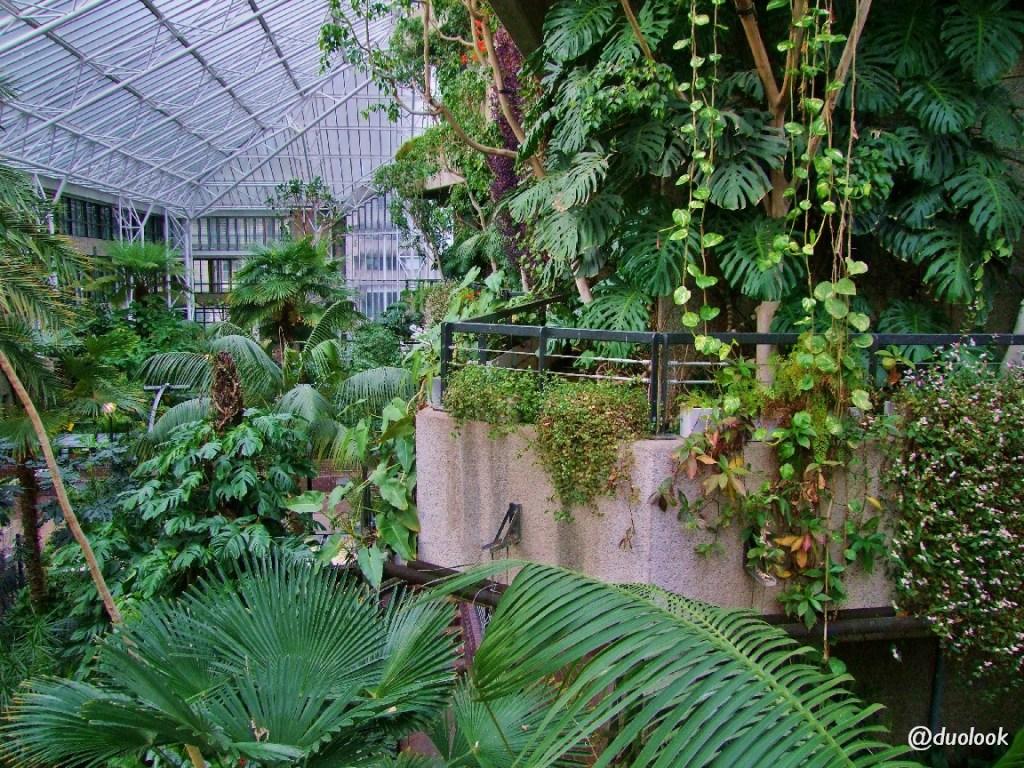atrakcje w londynie ogrody
