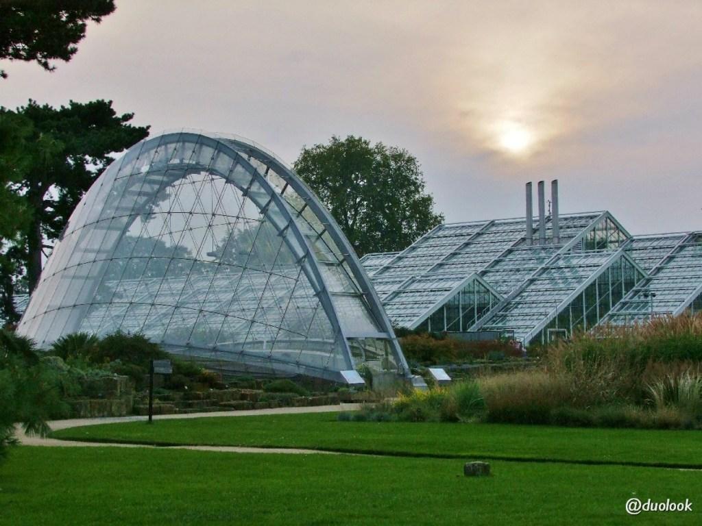 szklarnie ogrody atrakcje kew gardens w londynie