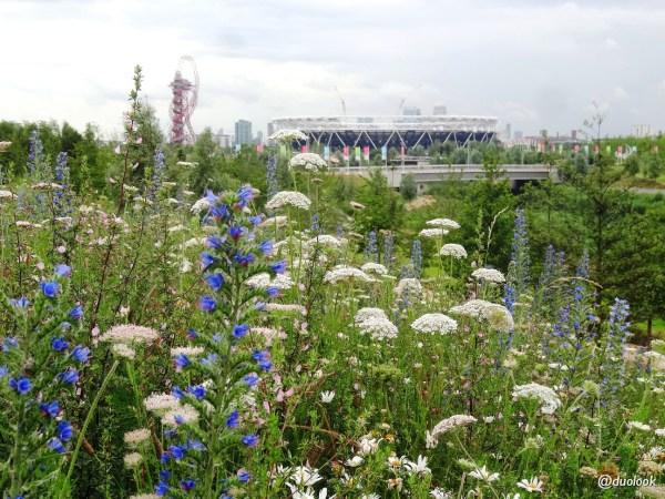 Queen Elizabeth Olympic Park w Londynie