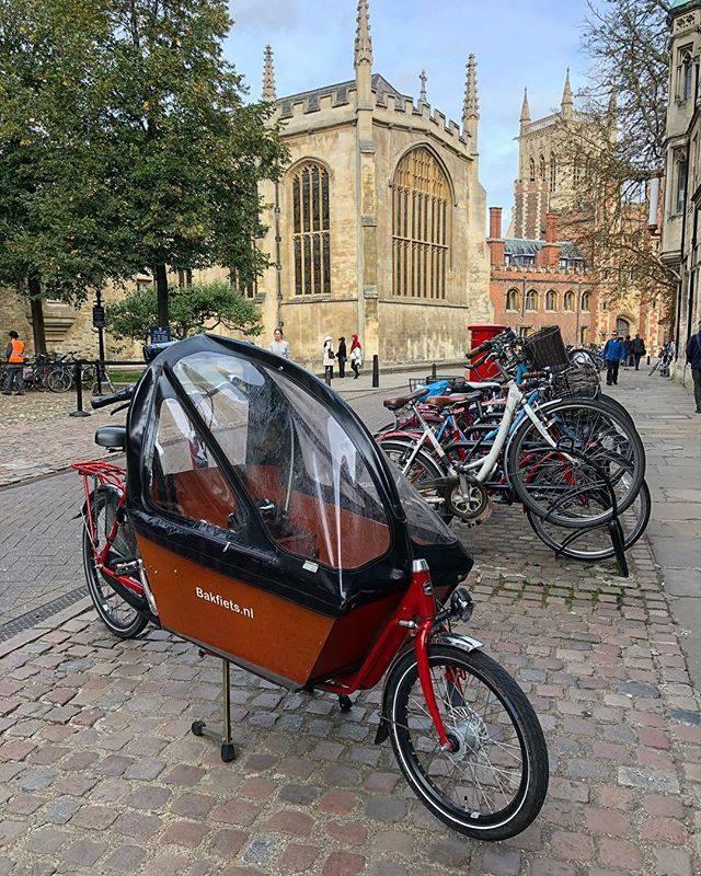 rowery w Cambrdge uniwerstytet Trinity Lane