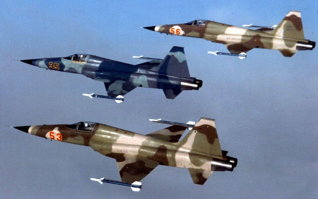 F-5E APQ-159 Tiger USAF