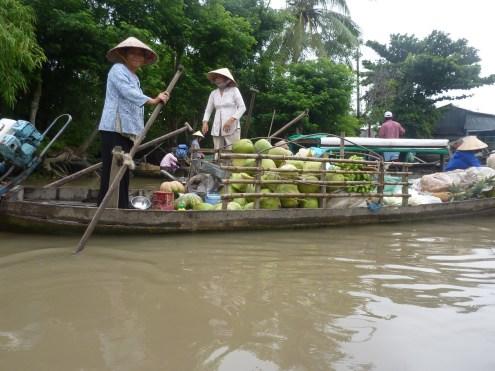 Mekong (50) (Copier)