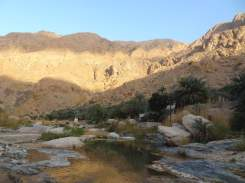 ob_3f871a_wadi-tiwi-7