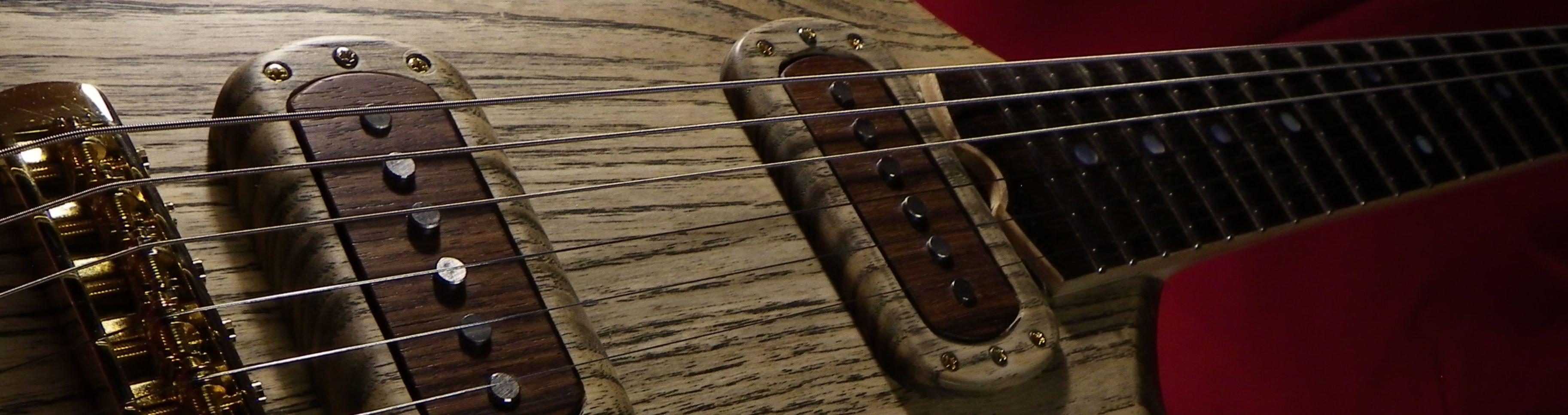 jean damien dupuy luthier accueil