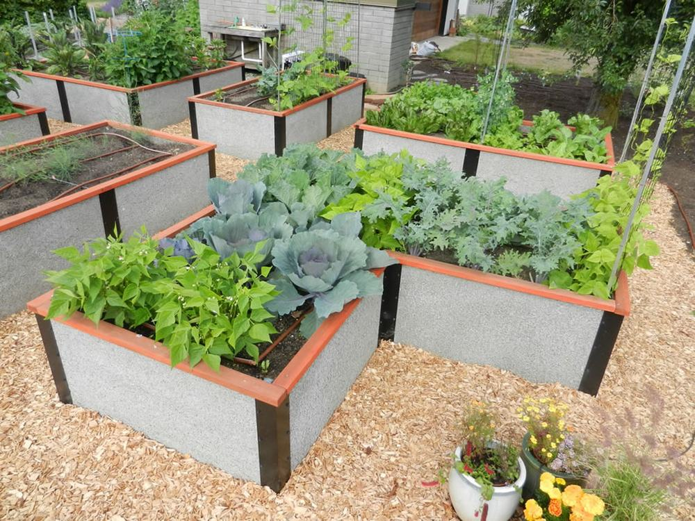 Photos Of Our Tall Raised Garden Box That Will Last A Lifetime