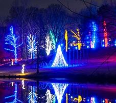 Walk of Lights Meadowlark by Meadowlark