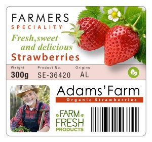Print produce labels with the Epson TM-C3500 color label printer