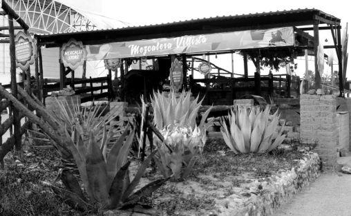 """Imagen de la nota """"Conoce el proceso de elaboración del mezcal en la FENADU 2015"""", publicada en el sitio web durango.com.mx"""