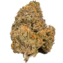 These are the 9 most popular weed strains in Colorado