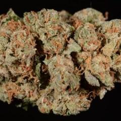 OG Kush (marijuana review)