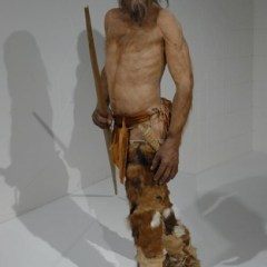 OTZI, the 5,300-year old Tyrolean Iceman Mummy and the World's Oldest Tattoos