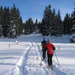 Nordic Ski Options in the Durango Area