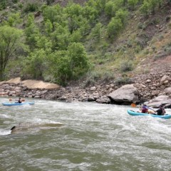 Our Lovely Local Animas River