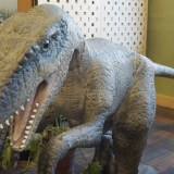 What You May Not Know about Dinosaurs