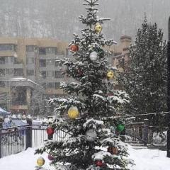 Durango Christmas Events
