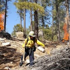 Durango Firefighter/EMT Looks Back on Wildland Firefighter Career