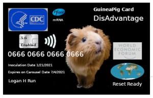 GuineaPigCard_07.jpg