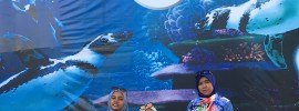 Best ke Underwater World Langkawi?