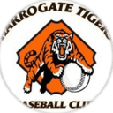Harrogate Tigers Logo