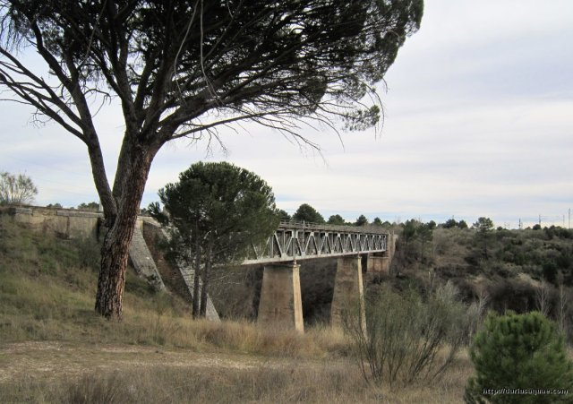 Durius Aquae; Coca, puente ferrocarril sobre el Voltoya