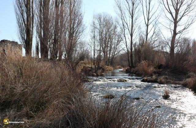 Río Arandilla desde el molino de la Concha