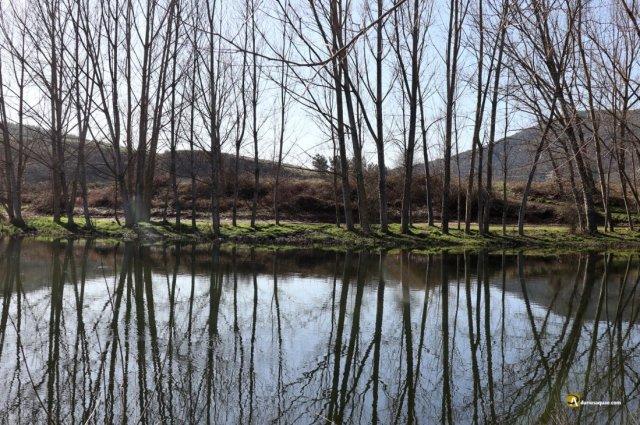 Durius Aquae: Un buen año para los ríos...