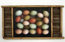 Two-and-a-half Dozen Eggs