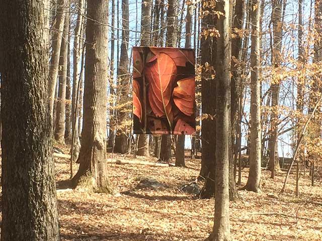 Leaves after Siqueros banner