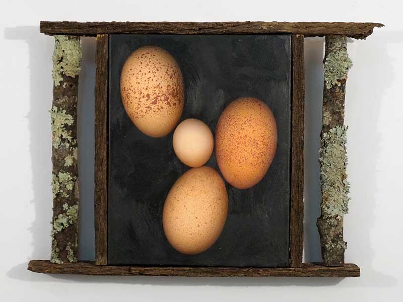Three Eggs and a Fairy Egg
