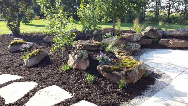 sandstone moss boulders in landscape