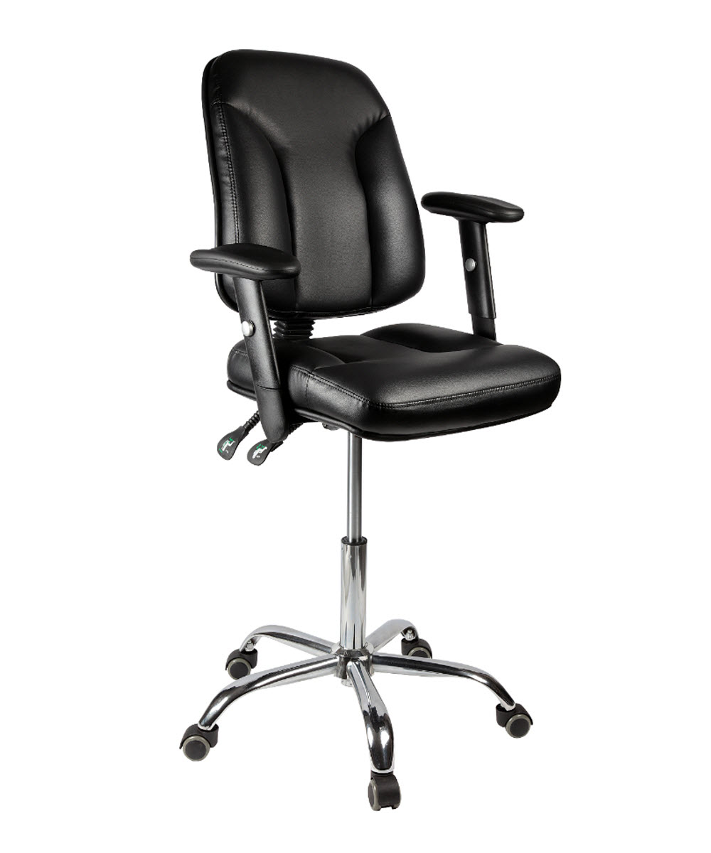 Classic Chair Professional Chair