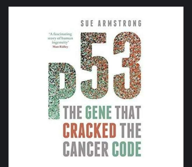 P53 破解癌症密碼的基因