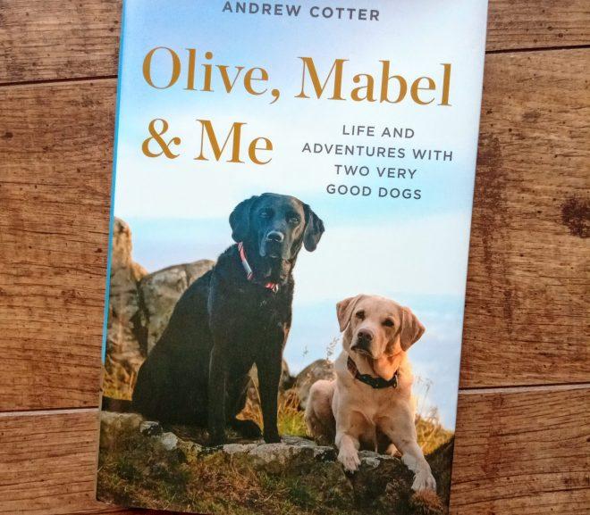 Olive, Mabel &  me 兩隻網紅狗與她們的主人